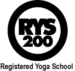 Yoga Teacher Training in Madison Wisconsin with Scott Anderson RYT 500